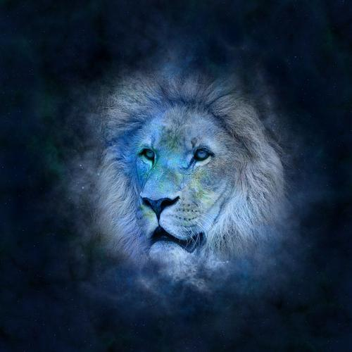 Signo de leão.jpg