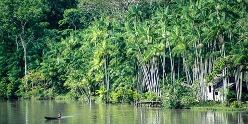 Atravesse o rio Amazonas.jpg